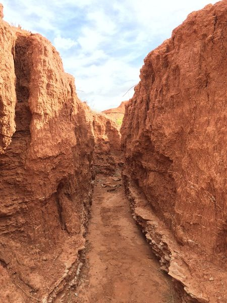 Camping At Caprock Canyon State Park Lubbock Pinterest State
