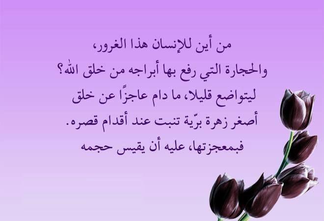 التواضع Qoutes Quotes Calligraphy
