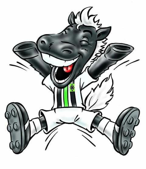 Junter Borussia Monchengladbach Borussia Gladbach Logo