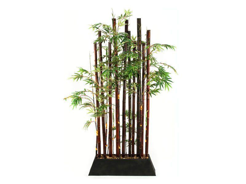 rent the bamboo plant divider | decoración para jardín | pinterest