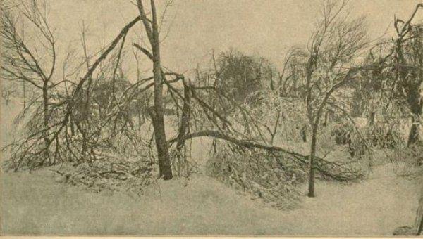 Zapisi o ledeni ujmi in gmotni škodi iz leta 1900 so na las podobni poročanju o aktualni slovenski katastrofi.