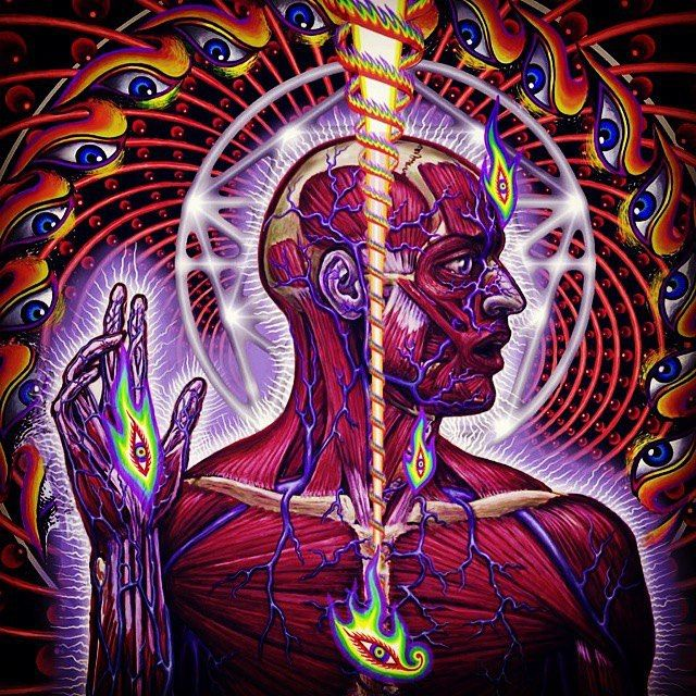band lateralus tool