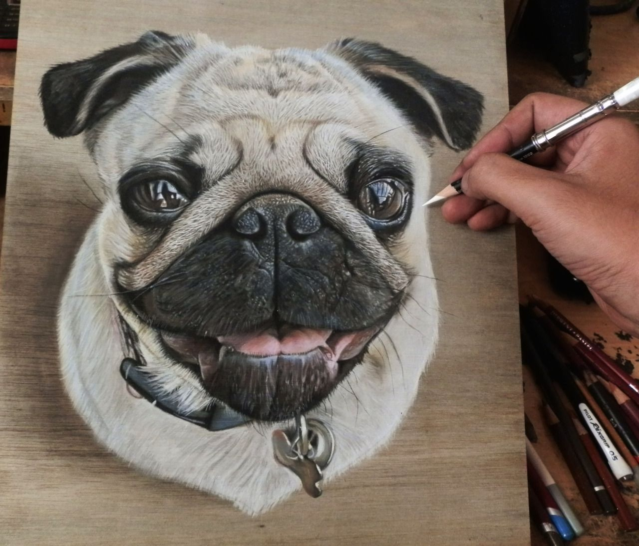 Pastel Color Pencil Pug Photorealistic Drawings
