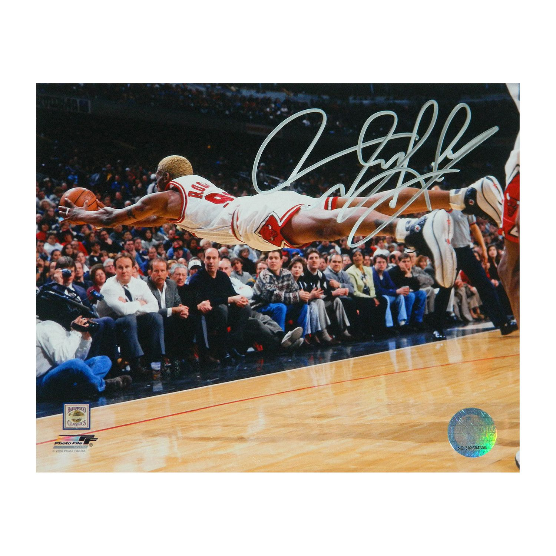 Dennis Rodman Signed Chicago Bulls Diving Action Photo 8 X 10 Dennis Rodman Chicago Bulls Dennis Rodman Bulls
