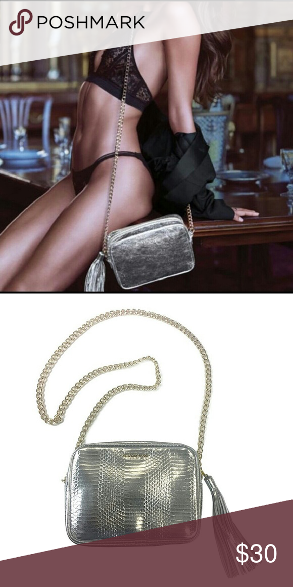 3042ec430ce23 Victoria's Secret Fashion Show Fringe Silver Purse Beautiful ...