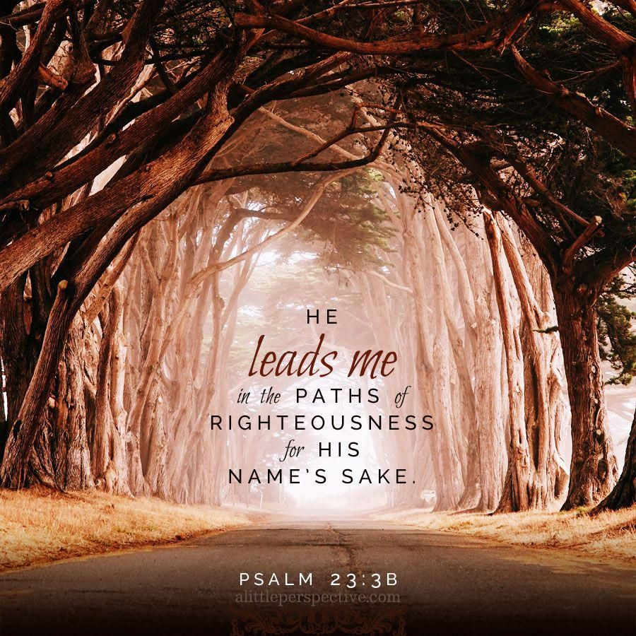 He leads me in the paths of righteousness for His name's sake. Psalm 23:3b | scripture pictures at alittleper… | Scripture pictures, Scripture  verses, Bible prayers