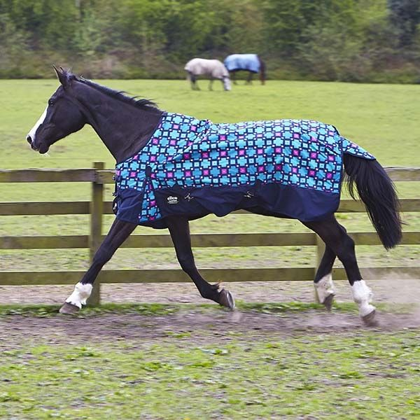 Turnout Rug Horse Rugs