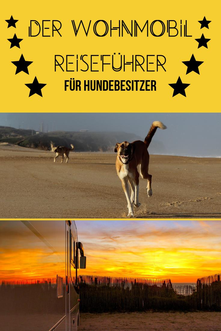 Photo of Der Wohnmobil Reiseführer für Hundebesitzer-Der ideale Begleiter für dern Wohnmobil Urlaub mit Hund