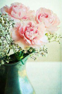 Pin Von Iris Pang Auf 花。flower | Pinterest | Ps Schnittblumen Frische Strause Garten