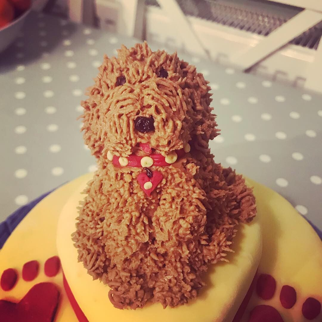 Waffle The Wonder Dog Doggy Birthday Cake I Made This For My