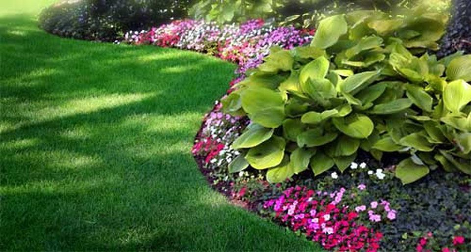 New Orleans Residential Landscaping - New Orleans Landscaping and ...  #landscapingfrontyard - New Orleans Residential Landscaping - New Orleans Landscaping And