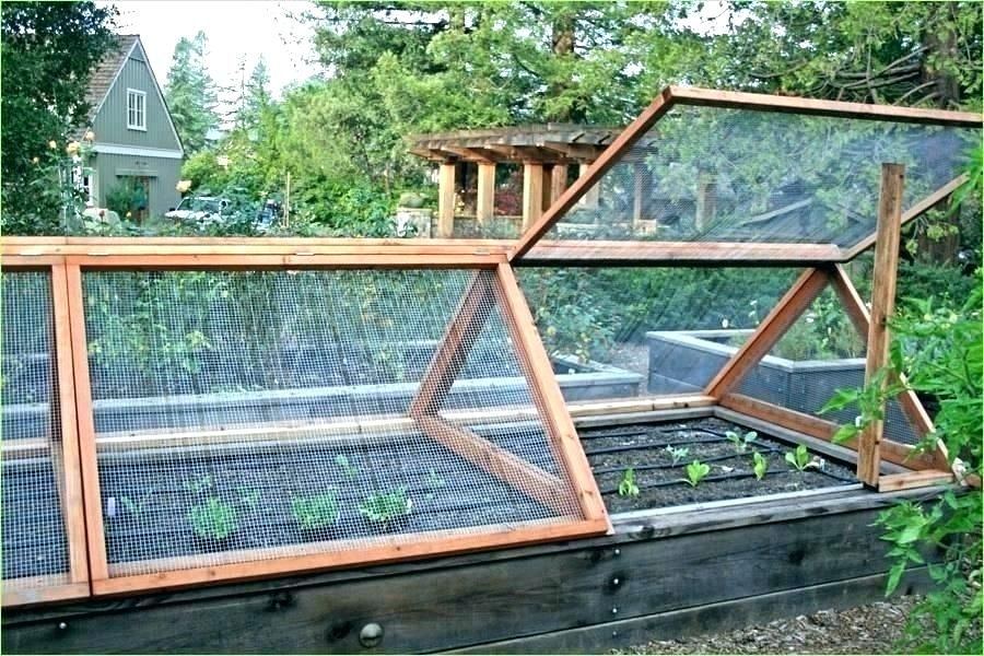 Tall Raised Garden Bed Plans How To Build A Raised Bed Cold Frame