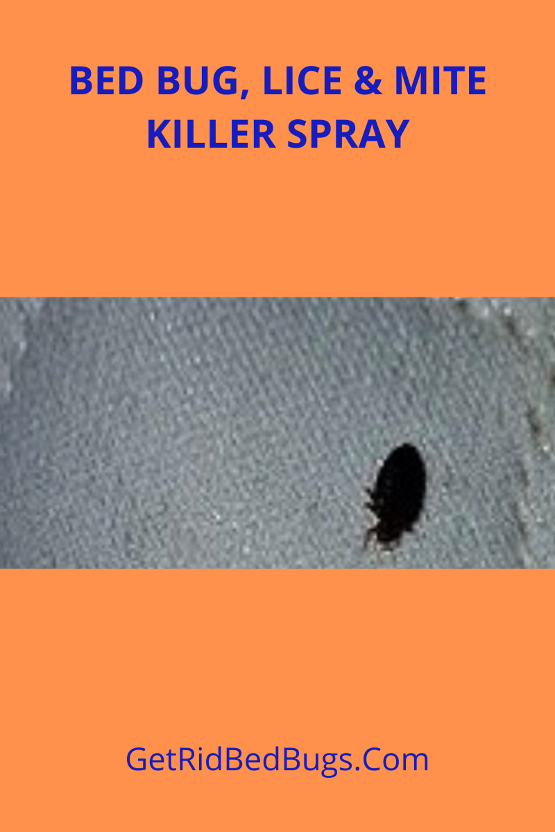 B072yvn9xw Premo Guard Should You Get It Get Rid Bed Bugs In