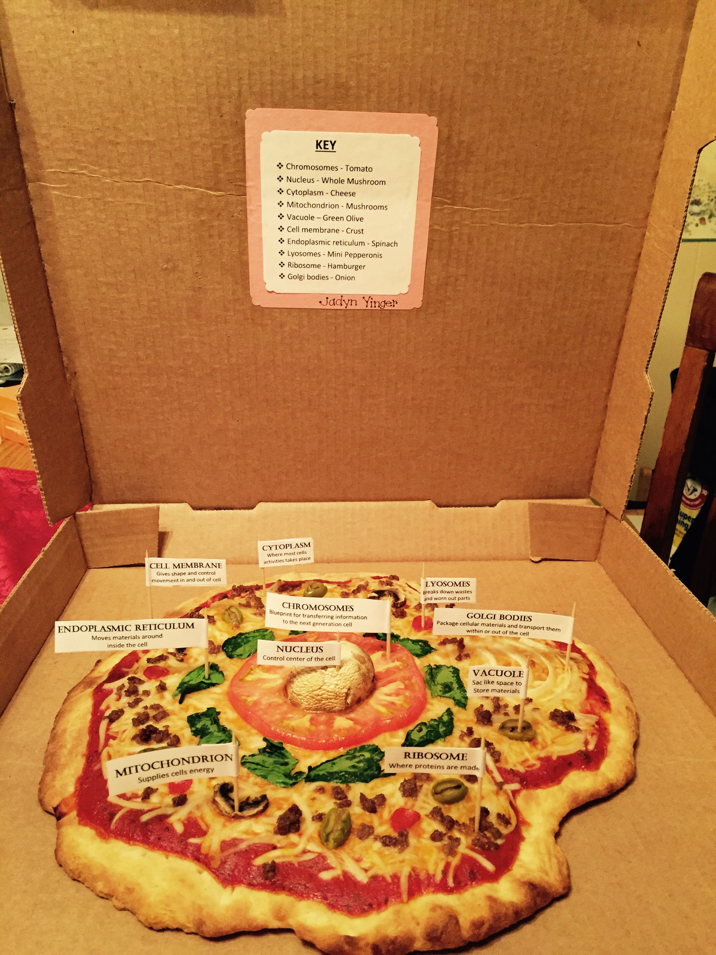 Animal cell pizza pinteres animal cell pizza more malvernweather Gallery