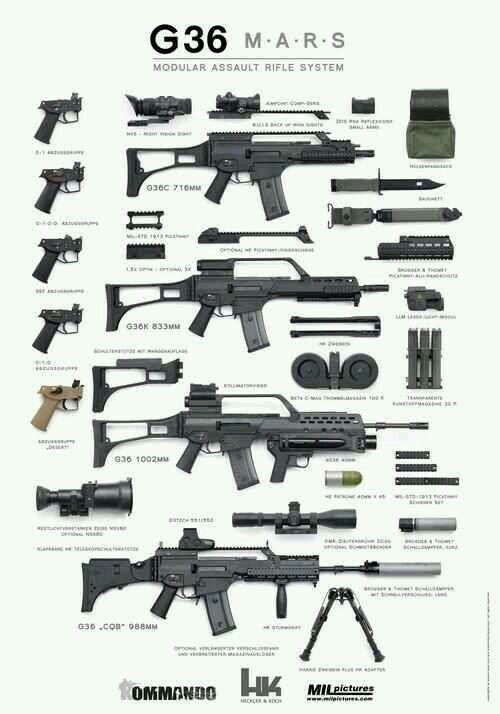 HK G36 Variants | Gun Fun | Guns, Military guns, Military