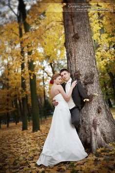 wedding photography | wedding photography | Pinterest | Green ...
