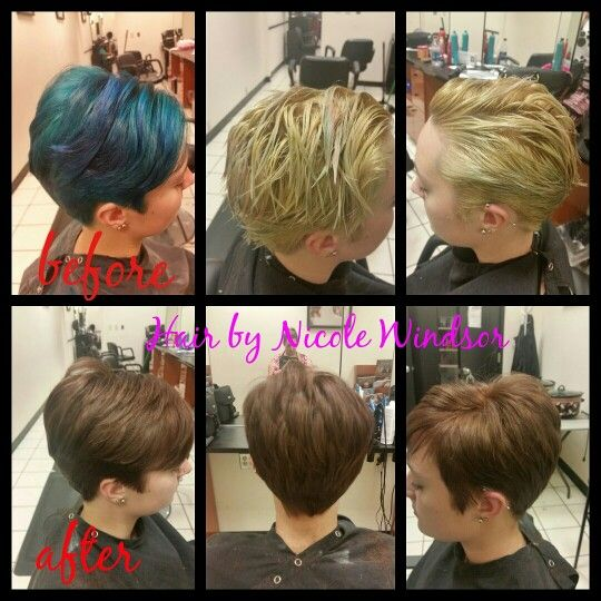 Before And After From Blue To Blonde To Brown All Over 5mm 6wn Colorsync Hair By Nicole Windsor At Jcpenney S Hair Color Formulas Hair Color Jcpenney Salon