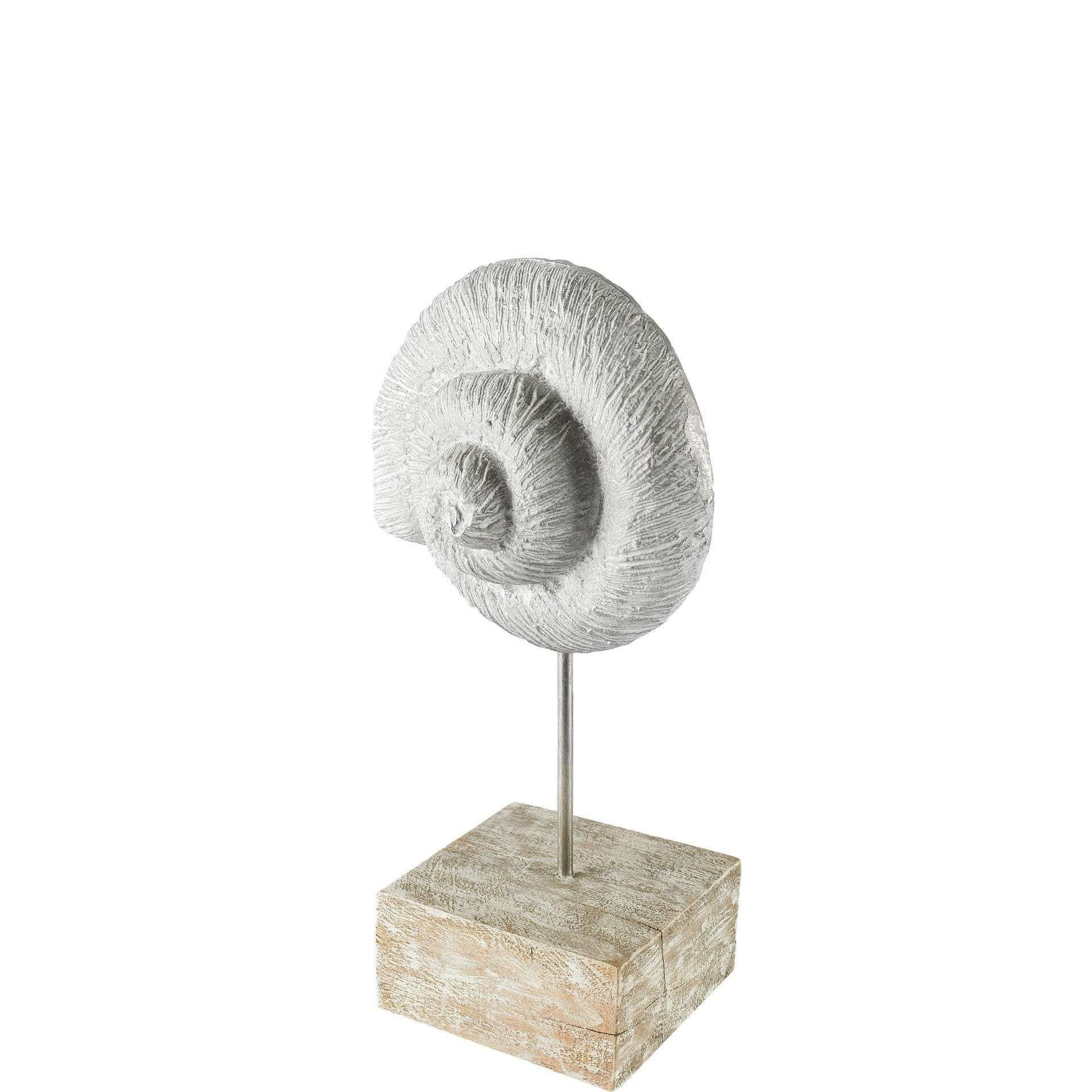 Photo of Mercana Coquina Decorative Object