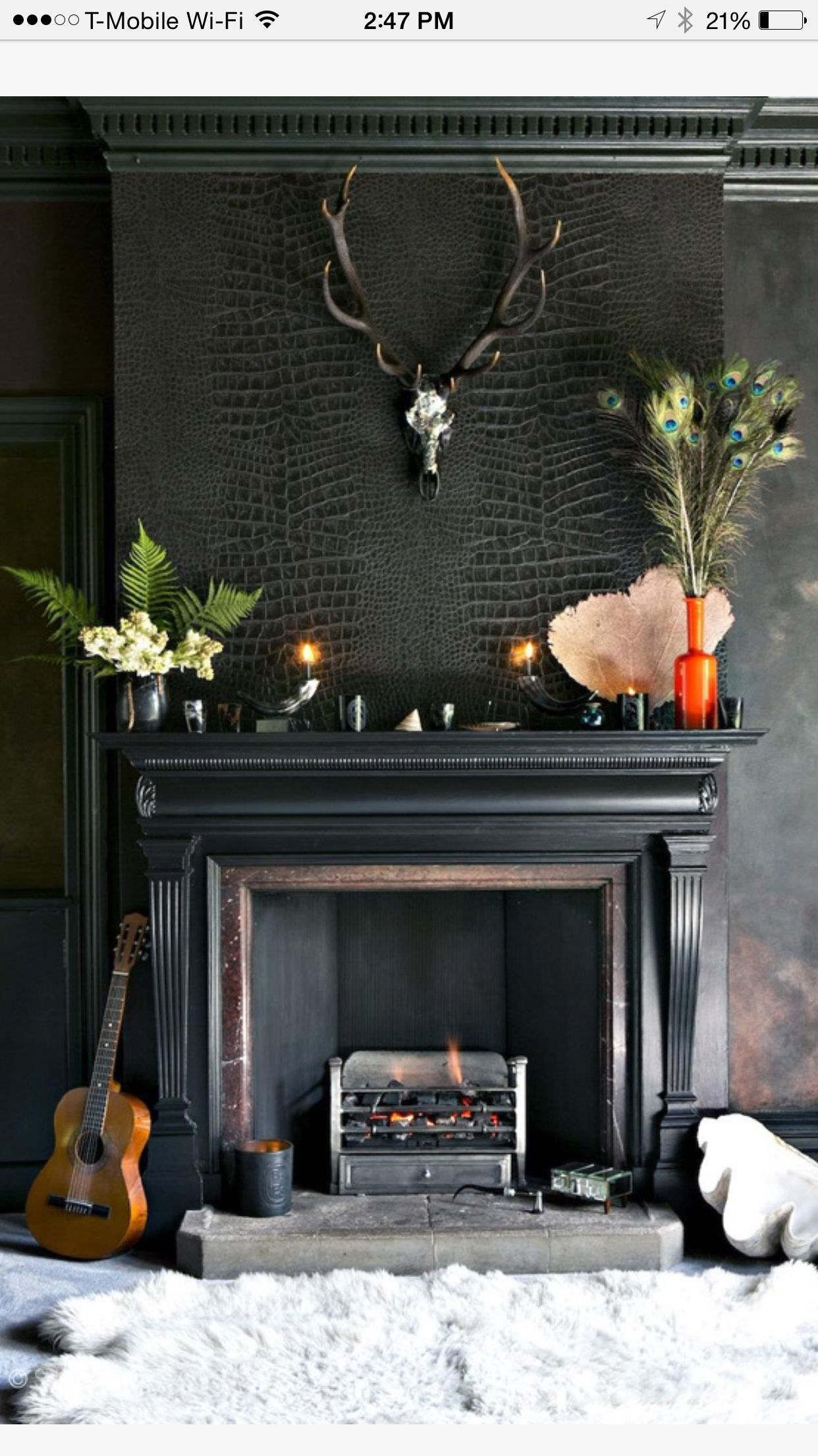 Best Alligator Wallpaper Dark Interiors Fireplace Black 640 x 480