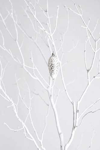 branch tree mo+mo living | White christmas, White branches ...