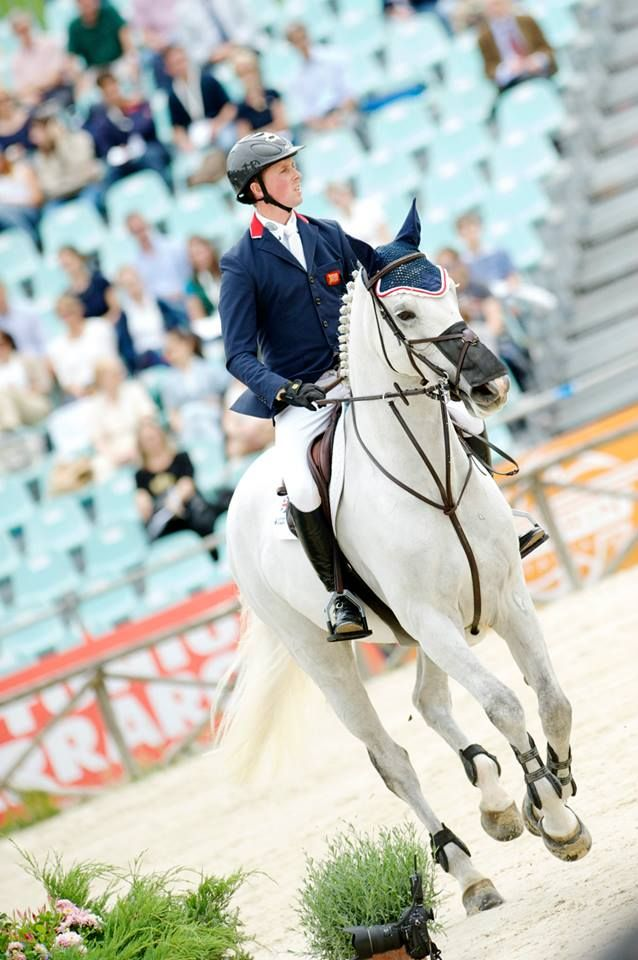 Ben Maher & Cella | Beautiful horses, Sport horse, Horse photography