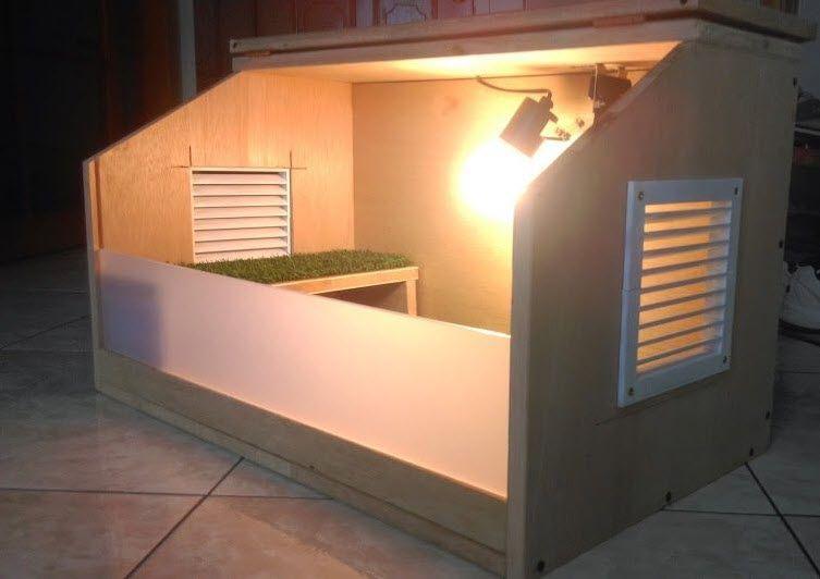 Modern Tortoise House Because Tortoises Can Be