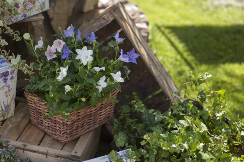 Garden wedding decor Idee matrimonio per giardino #gardenwedding