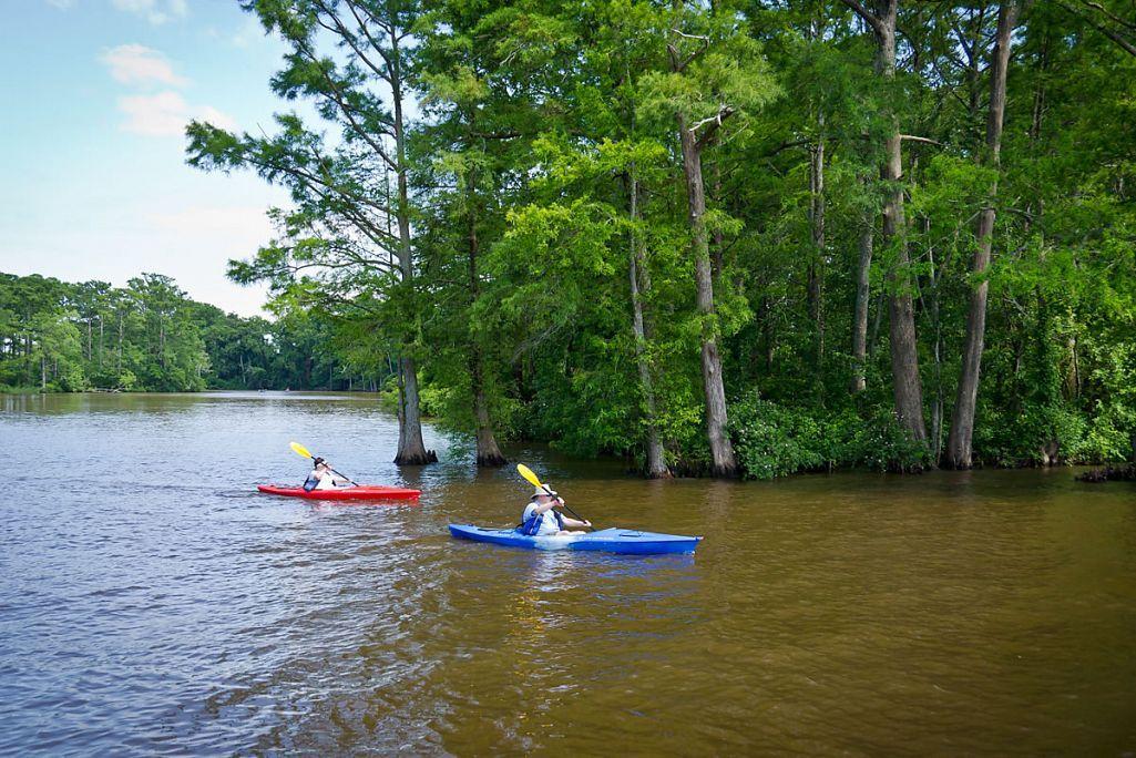 Kayaking on Queen Anne Creek, Edenton, North Carolina