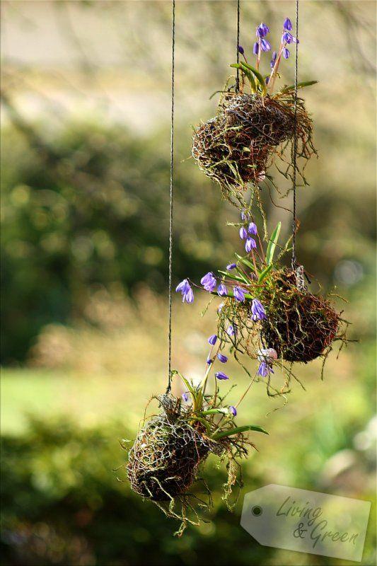 Frühjahrs(auf)putz! - Hasendraht DIY   Frühlingsblumen Gestecke ...