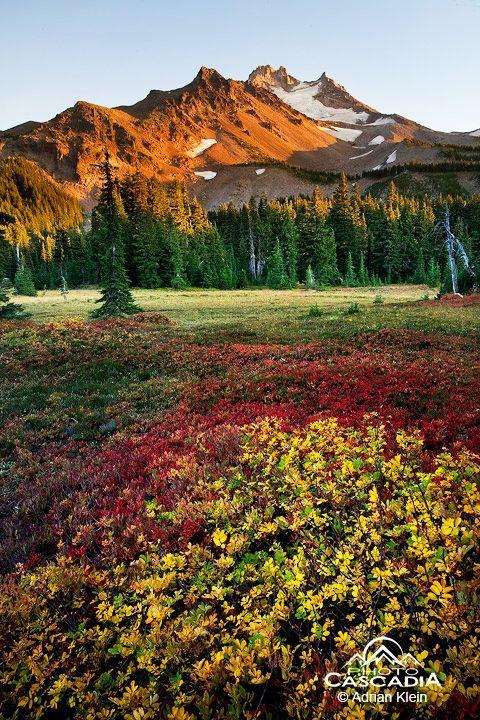 ✯ Jefferson Park Wilderness, Oregon