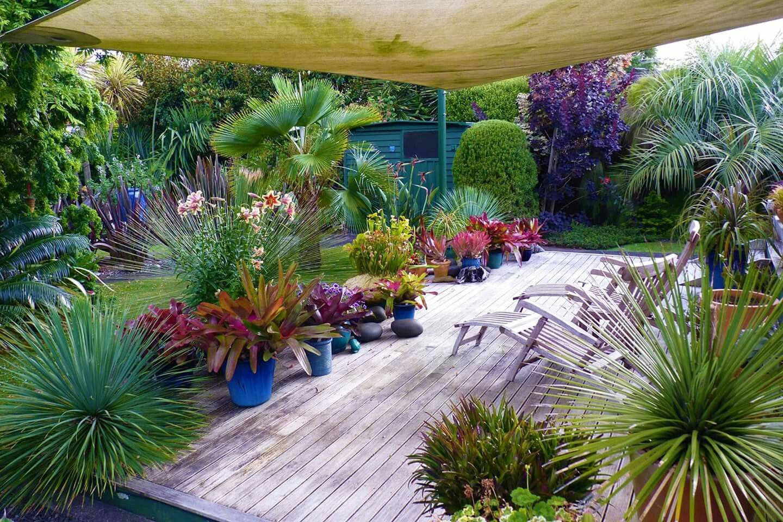 pin by lorraine dalton on tropical gardening pinterest