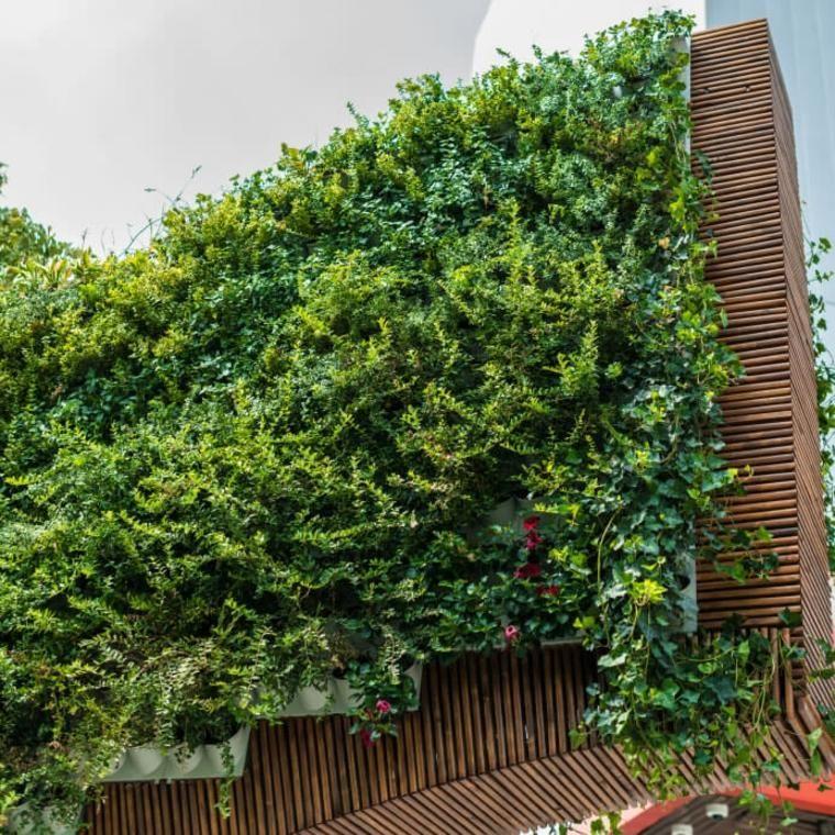 #Garten Und Terrasse Vertikale Gärten 40 Schockierende Ideen, Räume Zu  Dekorieren #Vertikale #