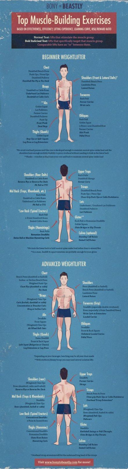 Fitness nutrition for men build muscle 32 ideas #fitness #nutrition