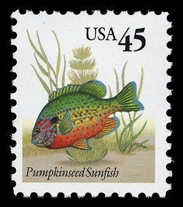 Pumpkinseed Sunfish, 1992
