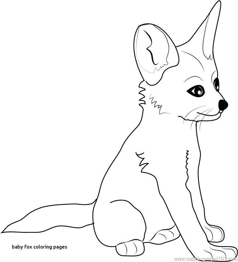Baby Fox Coloring Pages Fox Coloring Pages Fox Coloring Baby Fox