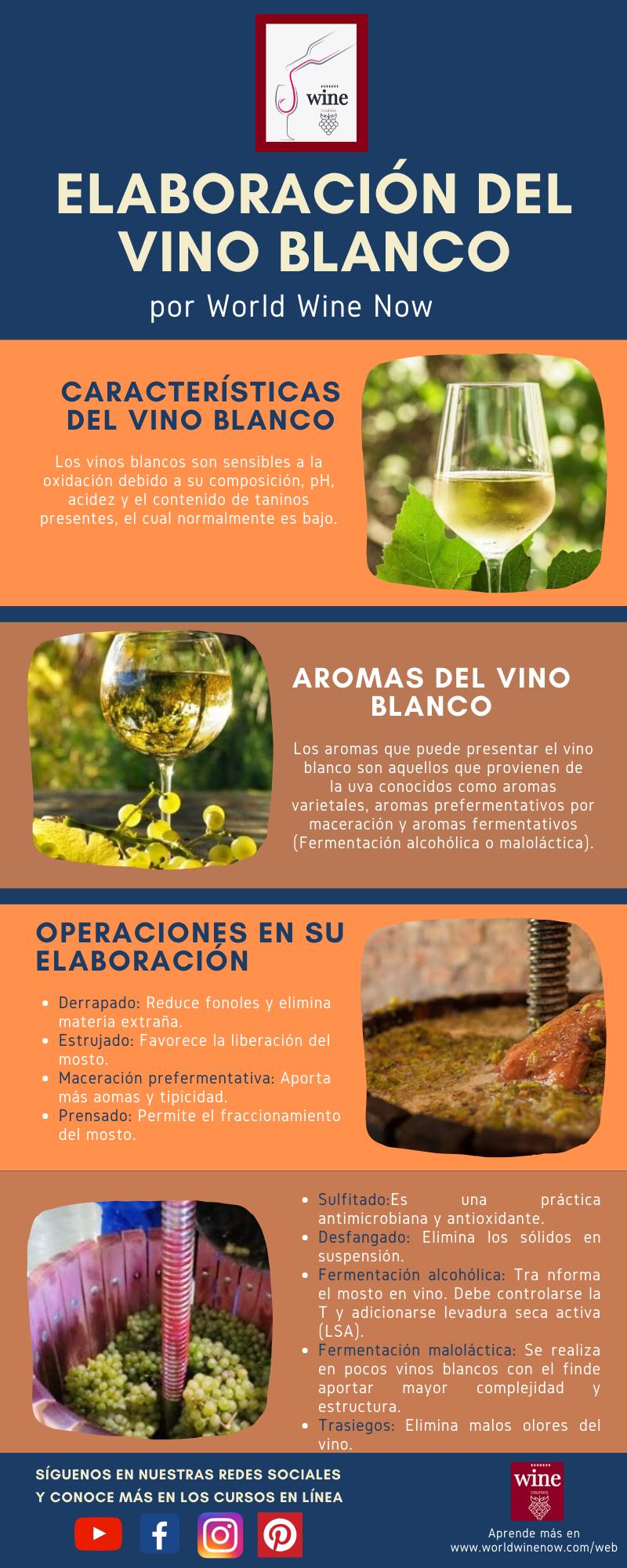 Elaboración De Vino Blanco Elaboracion Del Vino Vino Blanco Vinos