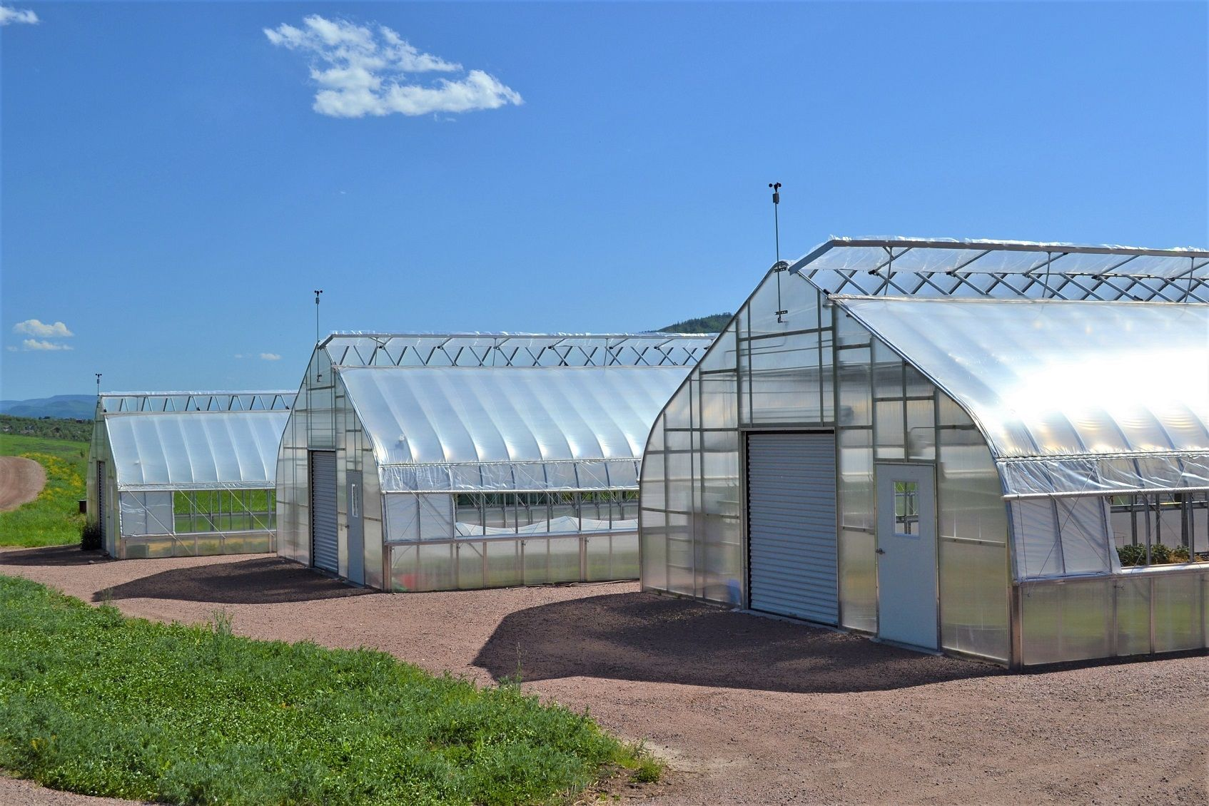 Simple Ways To Master Lighting In Your Greenhouse Greenhouse Modern Greenhouses Tunnel Greenhouse