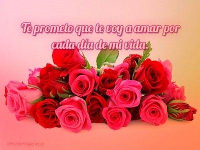 Ramos De Flores Con Frases De Amor Bellos Amor Pinterest