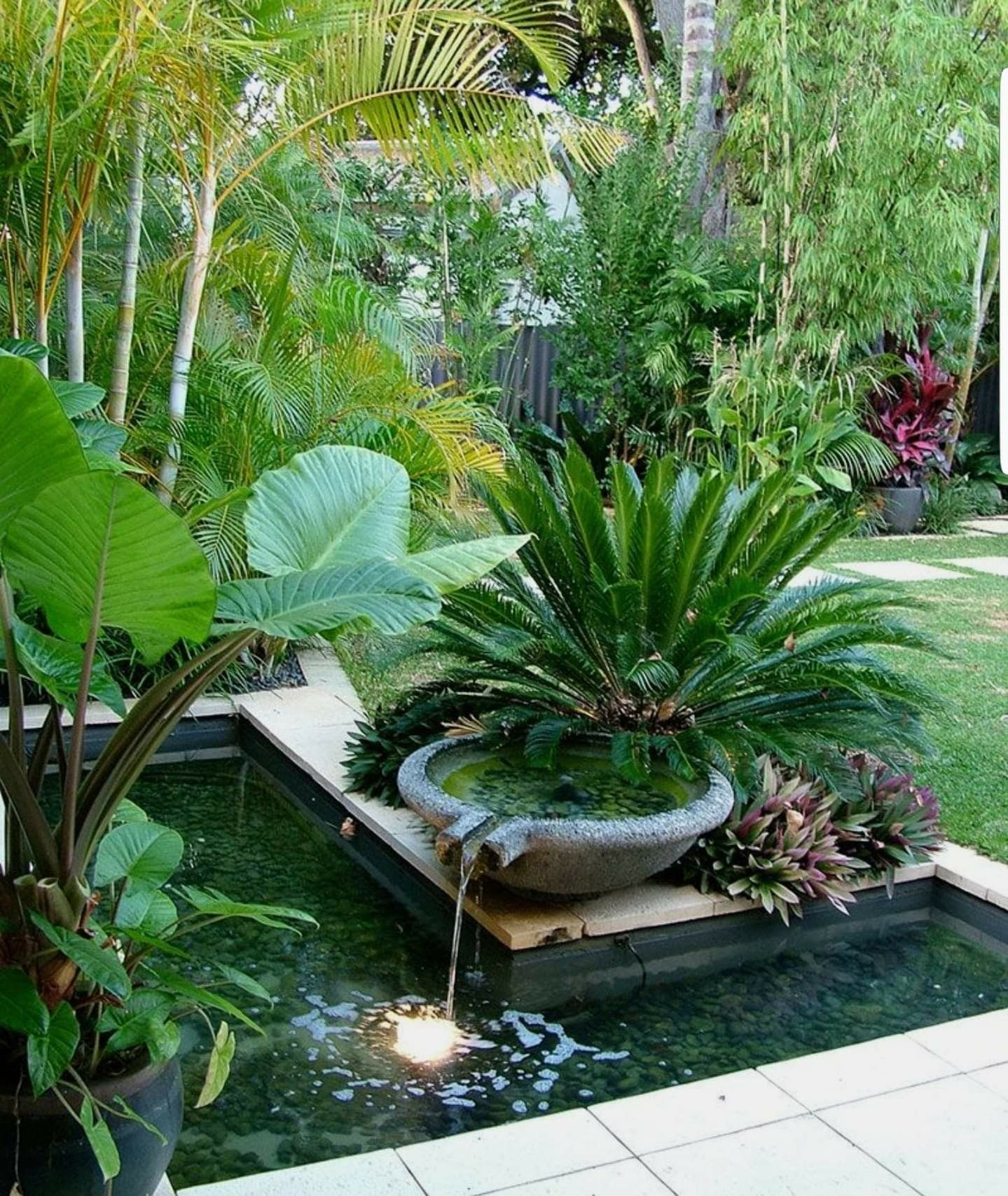 Tropical Home Garden Design Ideas: Garden Design Ideas And Concepts