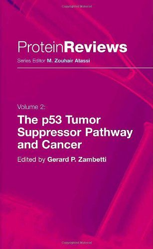 The p53 Tumor Suppressor Pathway and Cancer Yeah me! Pinterest