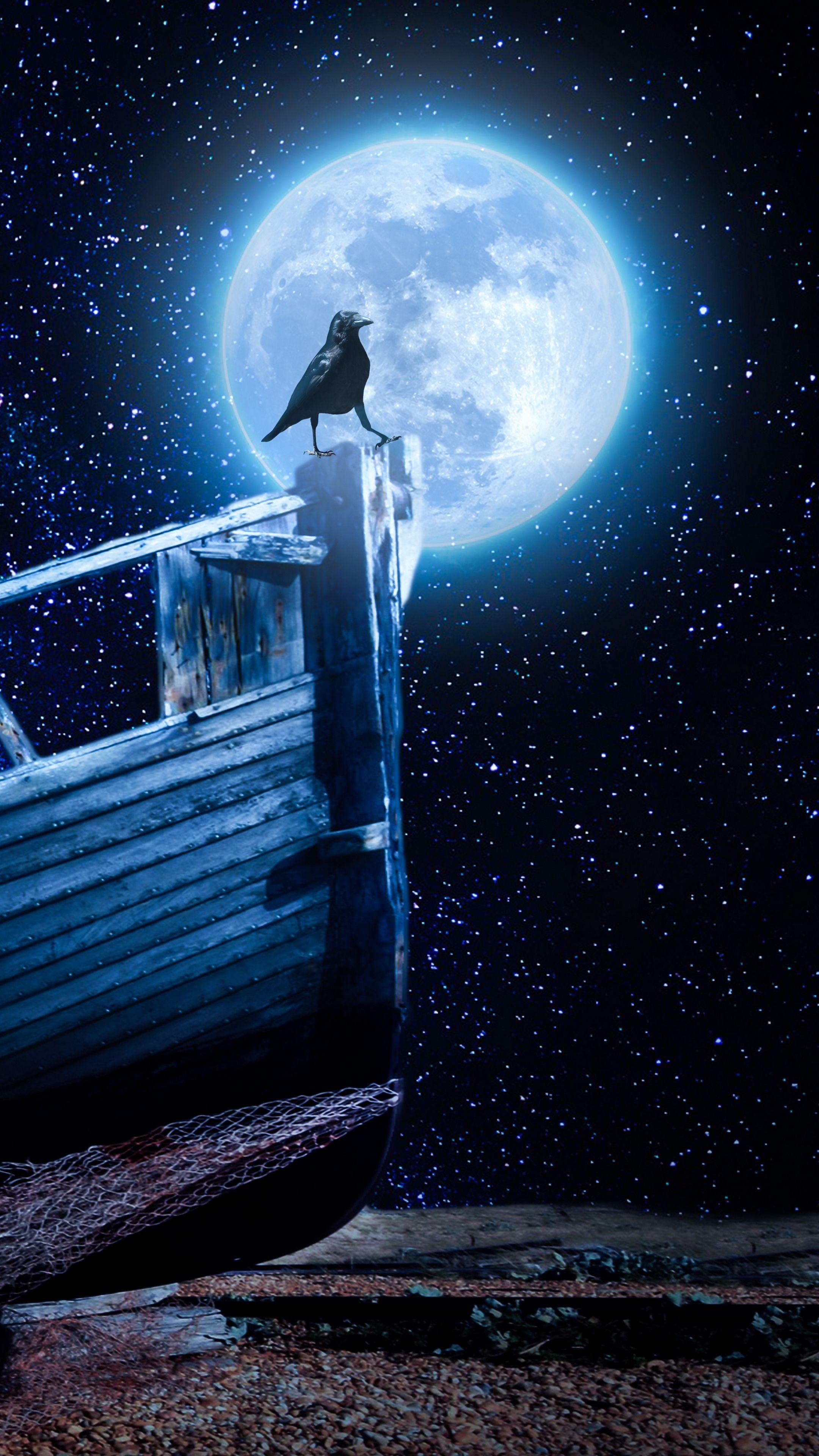 Misc crow, starry sky, boat wallpapers hd 4k