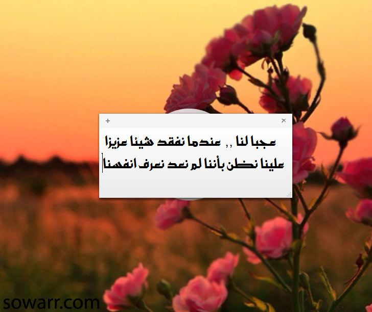 صور كلمات حزينة عن فقدان من نحب Love Quotes Inspire Me Inspiration