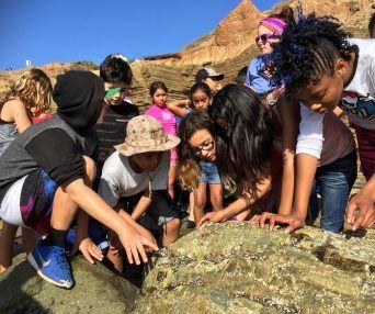 Children Examining Ocean Rocks Tuition Nova Southeastern University Summer Camp