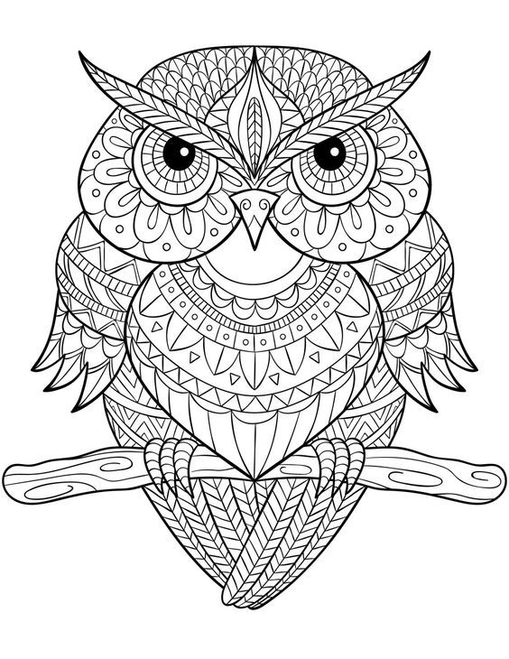 Owl Zentangle Coloring Page Owl Coloring Pages Mandala Coloring Pages Mandala Coloring