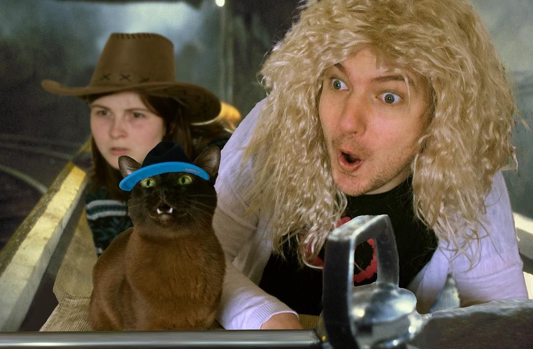 Man Recreates Famous Movie Posters With His Cat And The Result Is Hilarious Famous Movie Scenes Famous Movies Movie Scenes