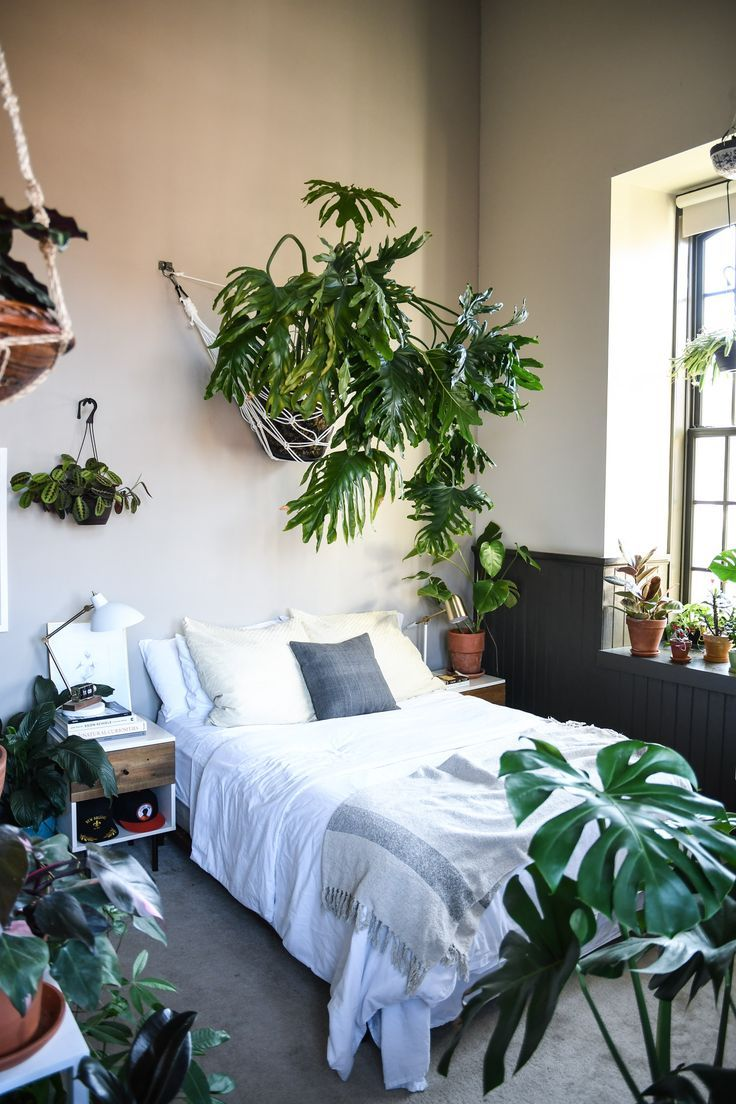 fabulous jungle house bedroom pictures | This Balitmore Home Filled Floor To Ceiling With Plants is ...