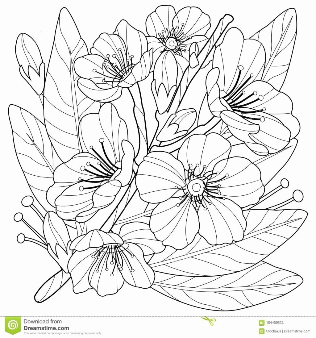 Garden Flowers Coloring Book Beautiful Collection Free Flower Coloring Book Page Flower Coloring Sheets Butterfly Coloring Page Printable Flower Coloring Pages