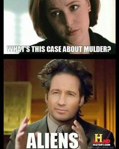 What S This Case About X Files Funny X Files Funny Pictures