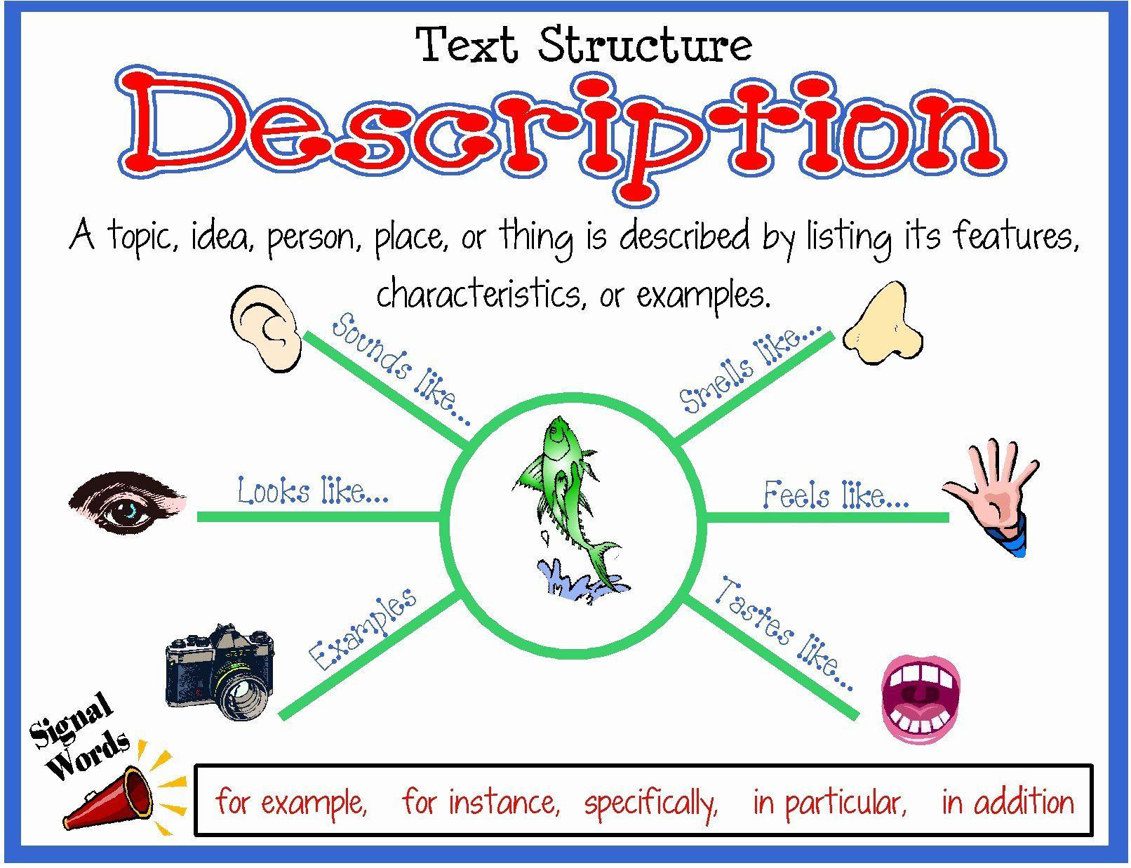 Text Structure Worksheet Inspirational 6a00e54faaf86b