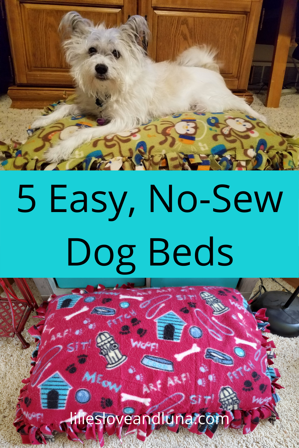5 DIY Pet Beds in 2020 Diy pet bed, Diy dog stuff, Diy